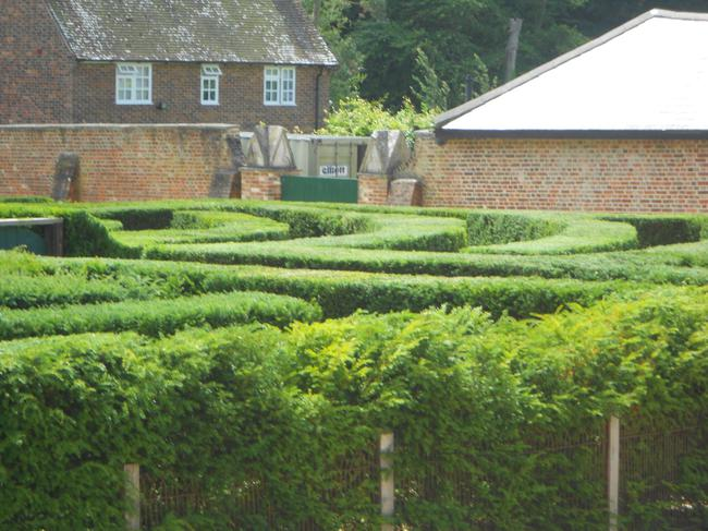 We found the maze very difficult!