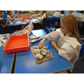 First, we created the shapes using newspaper