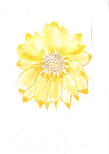 Amelia's superb sunflower artwork!