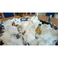 Sensory play using expanding foam and dinosaurs