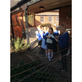 We visited the chickens and ducks in the middle garden to get inspiration for our poetry