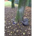 Blue kindness stones for anti-bulling week