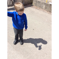 Shadow puppets - finding out and exploring