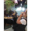 We loved observing what is growing in our 'Curiosity Cube'