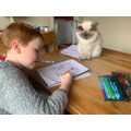 Cracking on with preposition, aided by a feline friend.