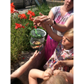 We set our butterflies free!