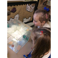 We have been looking into our curiosity box this week...what can we see?