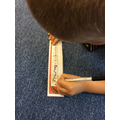 counting backwards using number lines.