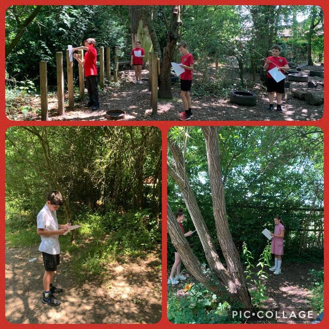 Outdoor learning in the BOLE