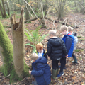 ...It's great fun exploring the woods...