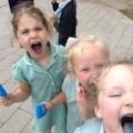 Aggh blue tongues!