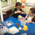 ...we had to use lots of scientific skills and work carefully...