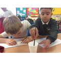 We wrote our Roman name using ink and a stylus.