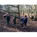 Exploring the woods with our teddies.