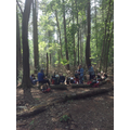 In our log circle