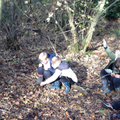 We enjoyed our afternoons at Forest School...