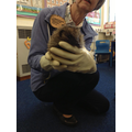 When 'Mrs Tiggywinkle' came to visit!