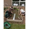 Preparing our allotment space
