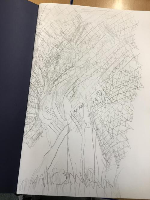 Frederick's Willow Tree