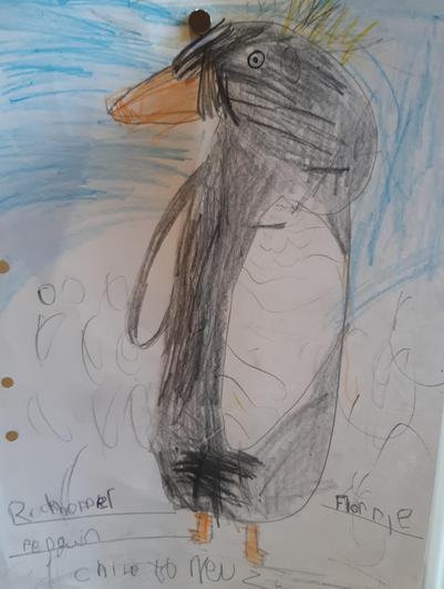 Florrie's Rockhopper penguin.