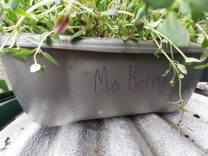 Don't forget to put your child's name on your pot