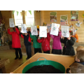 We learnt how a seed grows