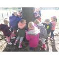 Meeting a tree