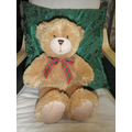 Meet Freddy Teddy Our class bear!