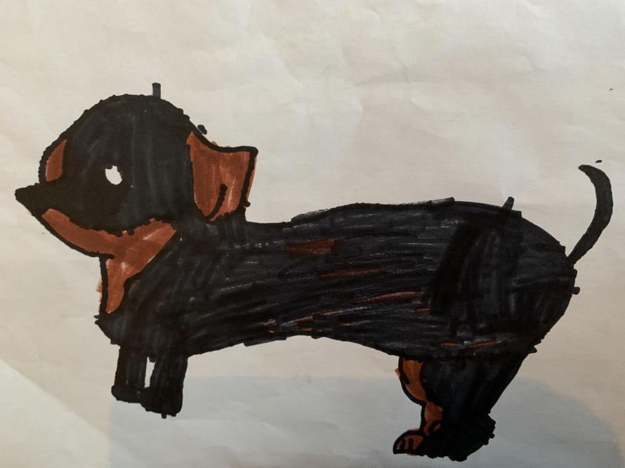 'Sausage' by Arlow