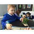 We enjoyed a sensory story about a garden