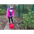 Class 5CL - Helping the environment by feeding the birds and litter picking.