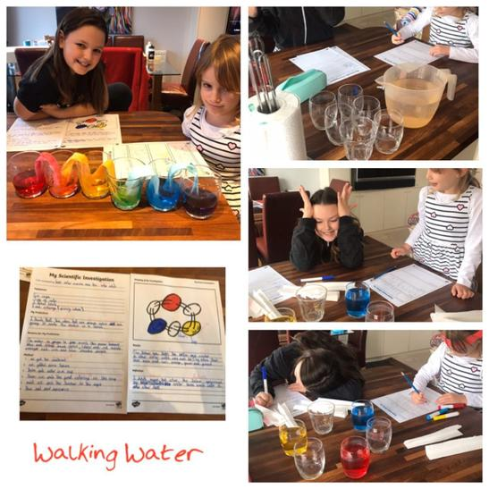Evelyn and Esme had a Science Day on Monday and they investigated capillary action, and also looked at the colour wheel. They had great fun doing this very easy experiment, Walking Water, and worked hard to write up what the results