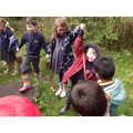 Team building in the woodland.