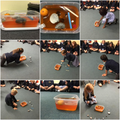 Exploring the theory of relativity with Jelly (bendy time and space)