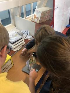 Weighing the mass of the Crystals in grams, using Sensitive Scales