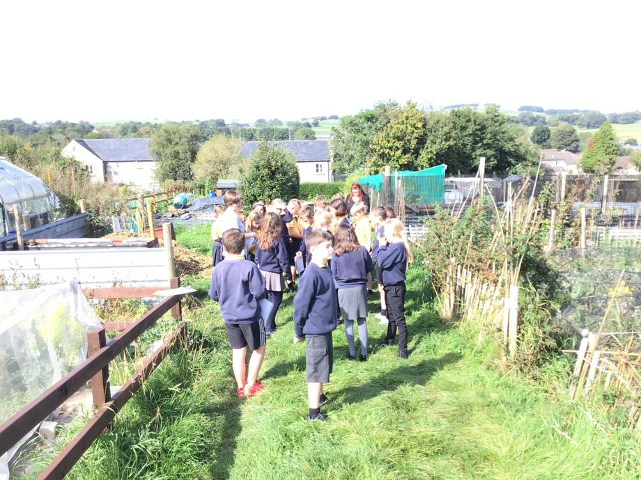 Looking at the Poly Tunnels