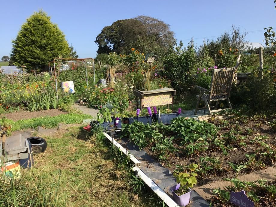 Raised Beds for increased drainage