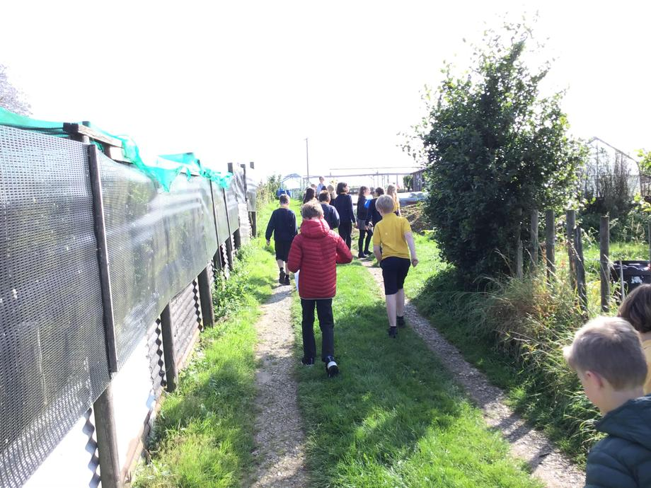 Making our way around the Allotment Perimeter