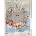 Spider shape picture