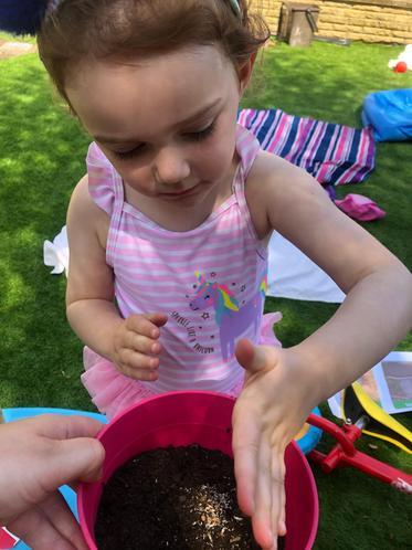 Planting seeds