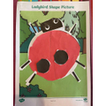 My Ladybird picture