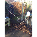 Sweeping up the leaves