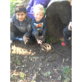 A mud model of Ned made during Forest School
