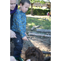Ned enjoying Forest School with Year One