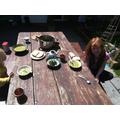 Lani creating a Stone Age nettle feast!