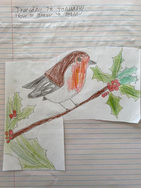 An excellent robin from Oscar!