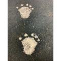 AHHH! OHHH! Footprints in the snow!
