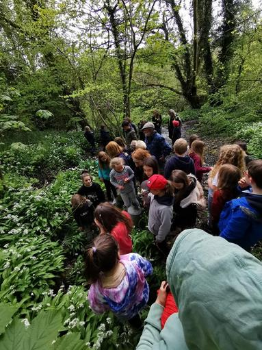 The search for the Bishopston Valley Iron Age Hillfort