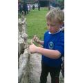 Building using Ancient skills