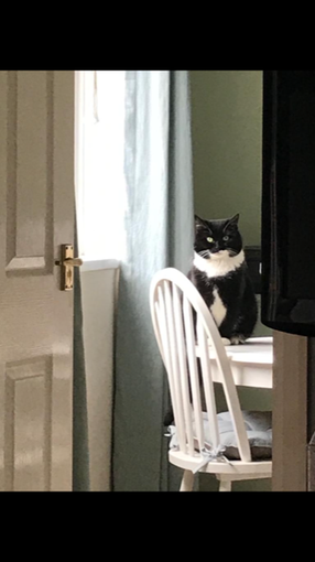 Do you ever feel like you are being watched?